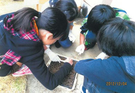 460新山小学校�B.jpg