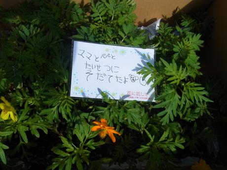 タローさん10.4_04.jpg